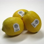 DHARMA Initiative Lemons