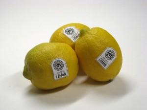 DHARMA Initiative Lemons