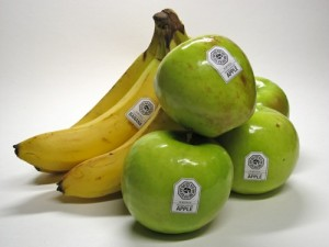 DHARMA Initiative Apples and Bananas